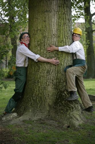 Timber 0
