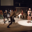Animal Farm - Theater im Menschenpark! -Agora- Premiere