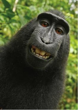 selfie léger